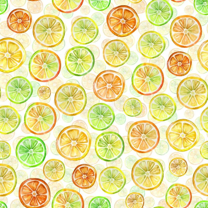 与可爱的五颜六色的柑橘切片的无缝的样式 多孔黏土更正高绘画photoshop非常质量扫描水彩 手拉的夏天例证 向量例证