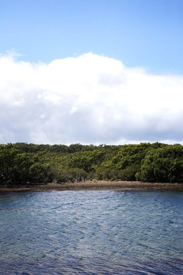 与可爱的多云天空的美好的seaview 免版税库存照片