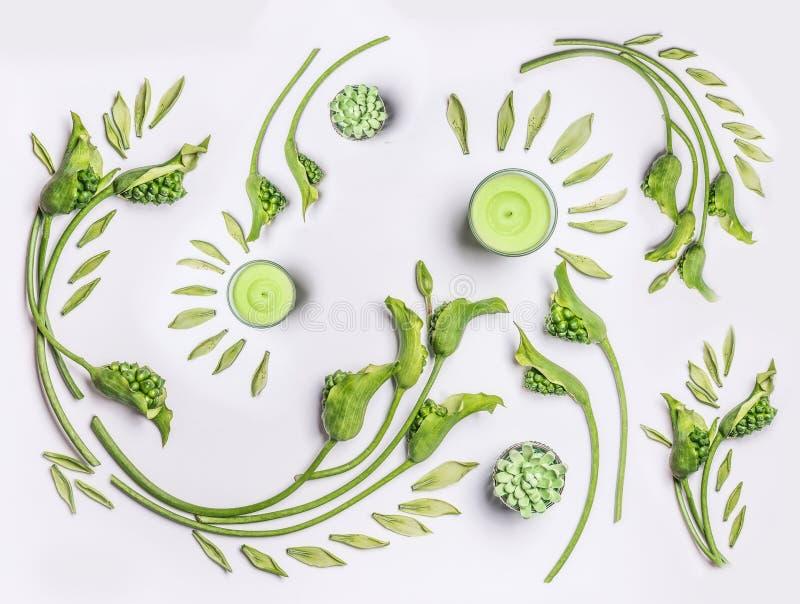 与叶子、绿色花和蜡烛的植物的平的位置在白色背景,顶视图 温泉,健康,秀丽 库存图片