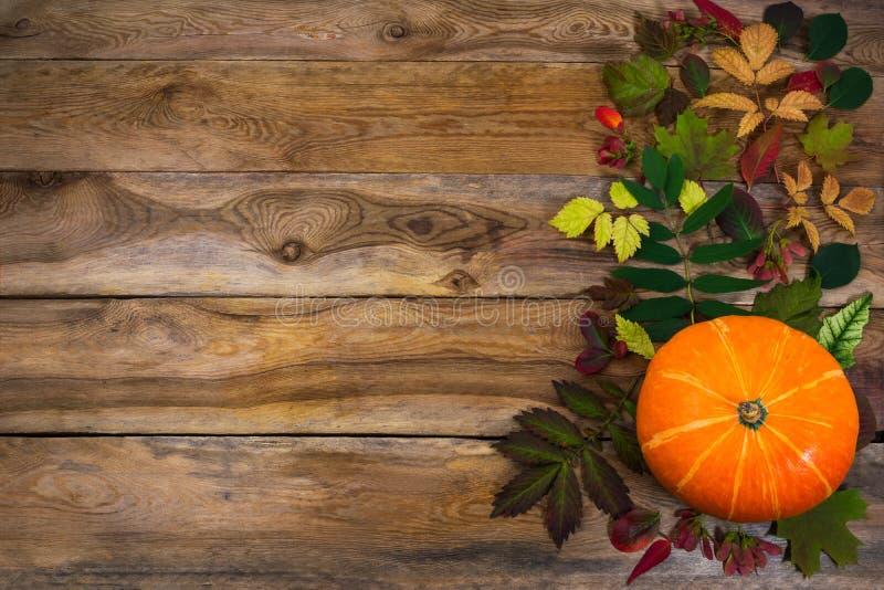 与叶子和南瓜的感恩背景在老桌上 免版税图库摄影