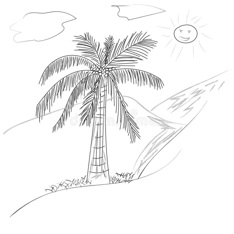 与叶子和太阳,在概述单色等高的手拉的样式设计的棕榈树椰子在白色图片