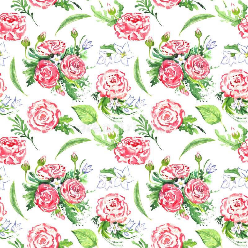 与叶子和白色风铃草的毛茛属桃红色花 皇族释放例证