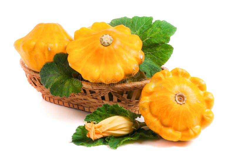 与叶子和花的黄色pattypan南瓜在白色背景隔绝的一个柳条筐 库存图片
