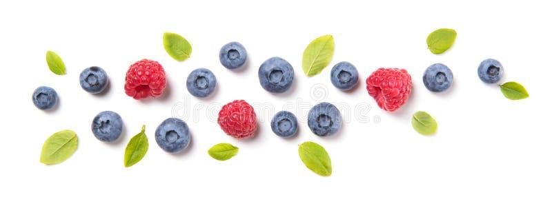 与叶子和莓,在白色背景隔绝的莓果装饰品的新鲜的蓝莓,顶视图 库存图片