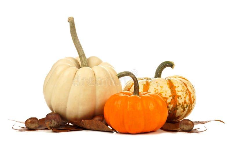 与叶子的三个独特的秋天南瓜在白色 免版税图库摄影
