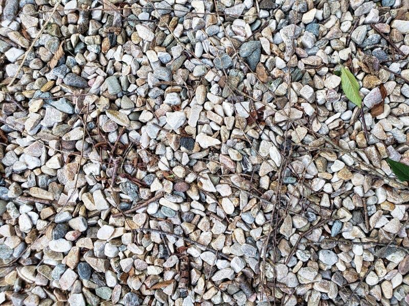 与叶子的小石渣和岩石纹理 库存图片