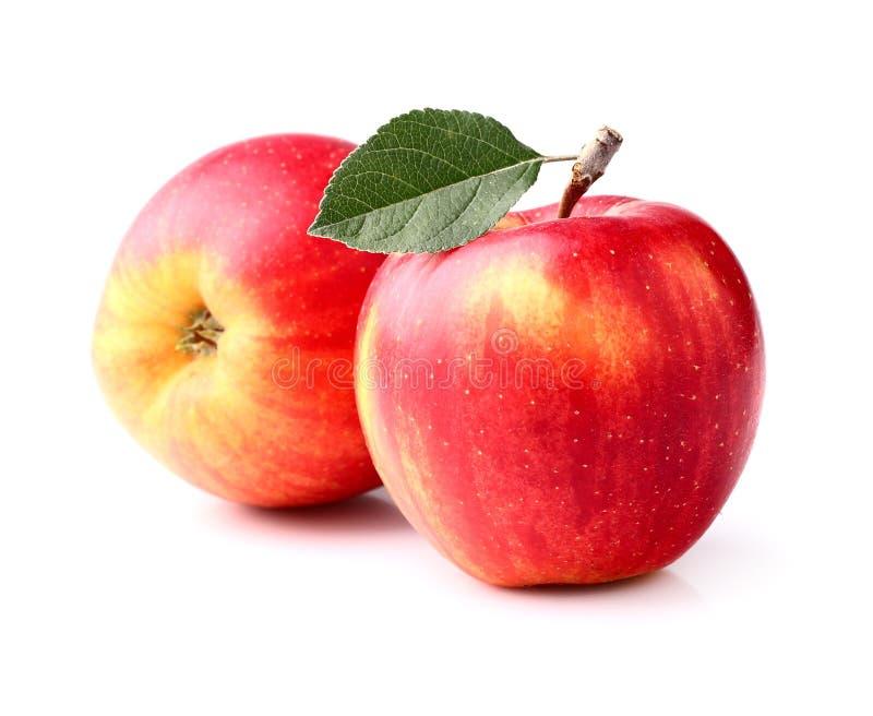 与叶子的成熟苹果 库存图片