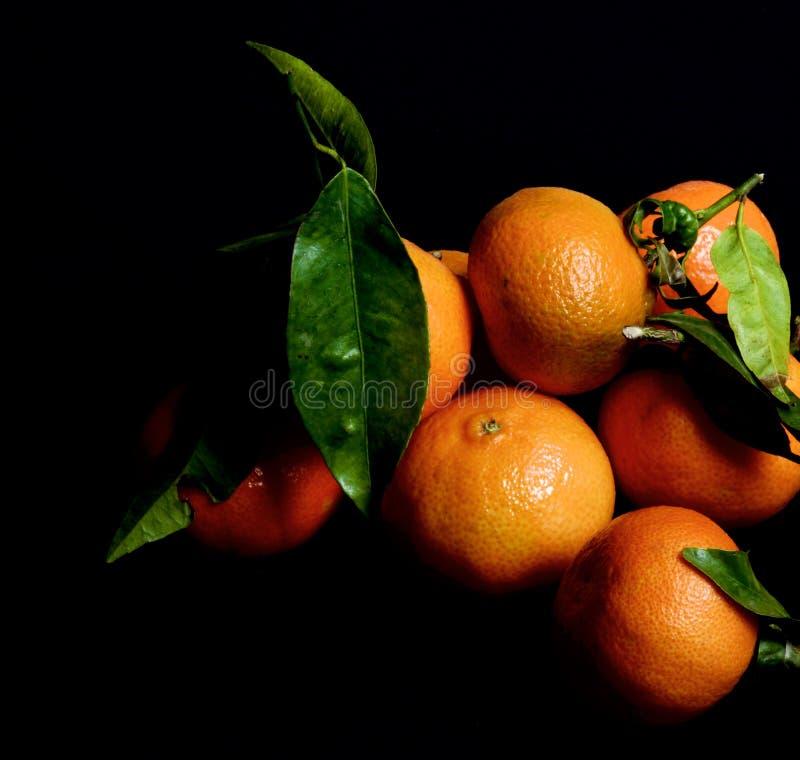 与叶子的成熟蜜桔 免版税库存图片