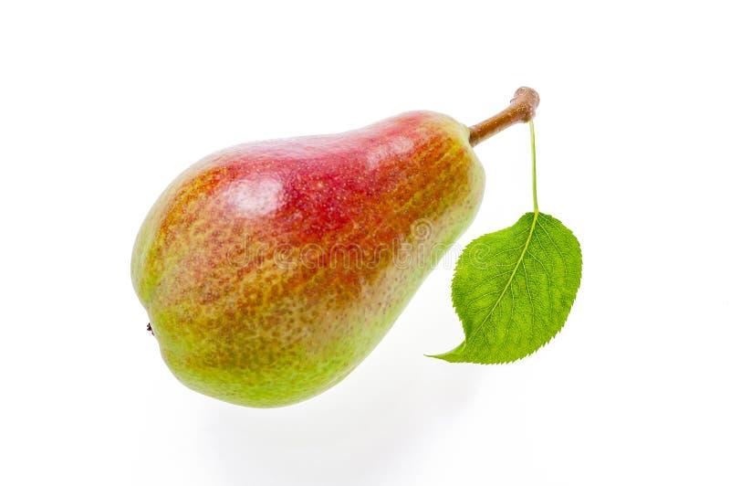 与叶子的成熟,水多的半绿色半红色梨 隔绝在丝毫 免版税库存照片