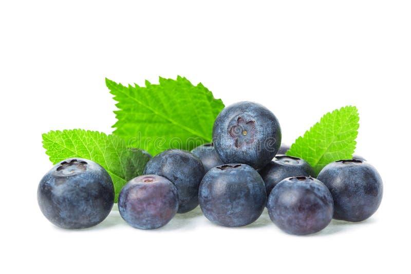 与叶子的新鲜的成熟蓝莓在白色背景关闭隔绝 健康的食物 免版税库存照片