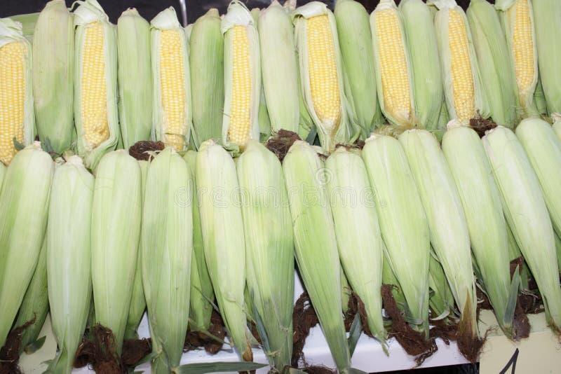 与叶子的新鲜的玉米棒子 有机甜玉米 ?? 充分的护板照片 菜背景纹理 饮食和健康吃 免版税库存照片