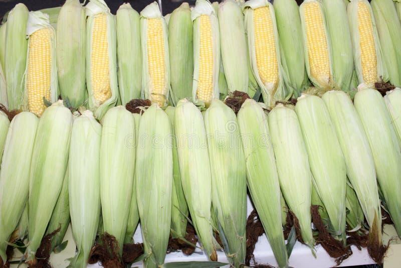 与叶子的新鲜的玉米棒子 有机甜玉米 ?? 充分的护板照片 菜背景纹理 饮食和健康吃 免版税库存图片