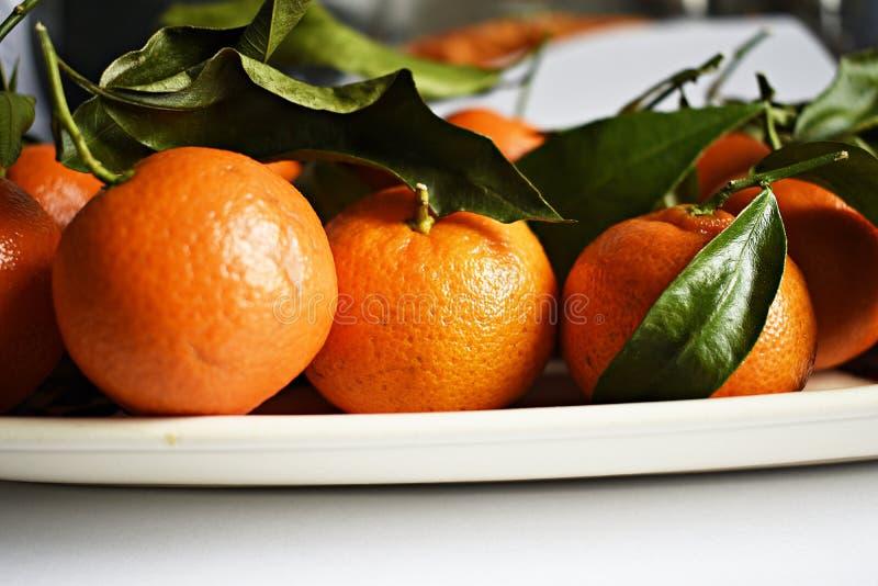与叶子的柑桔 免版税库存图片