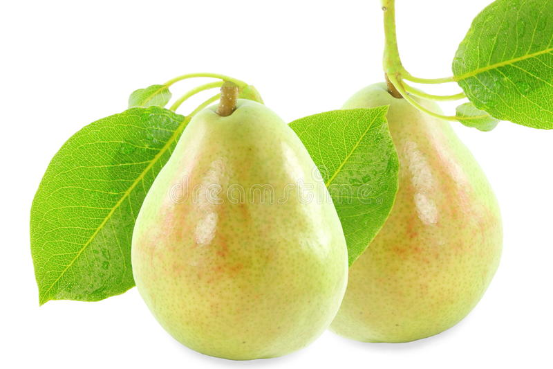 与叶子的梨果子在纯净的白色背景中 库存图片