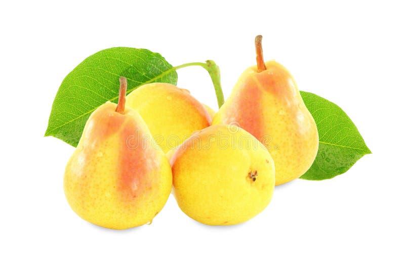 与叶子的梨果子在纯净的白色背景中 免版税图库摄影