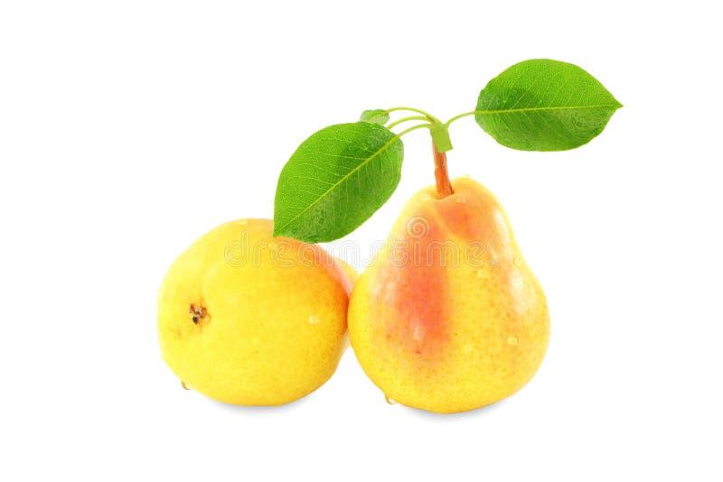 与叶子的梨果子在纯净的白色背景中 免版税库存图片