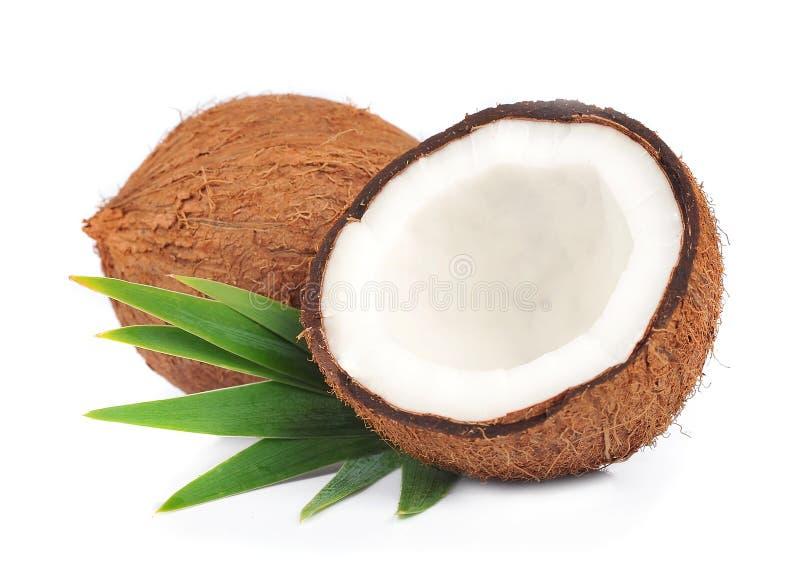 与叶子的椰子 免版税库存照片