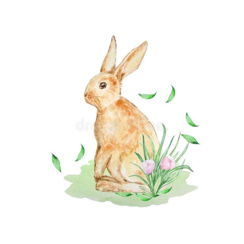 与叶子的水彩橙色兔子 皇族释放例证