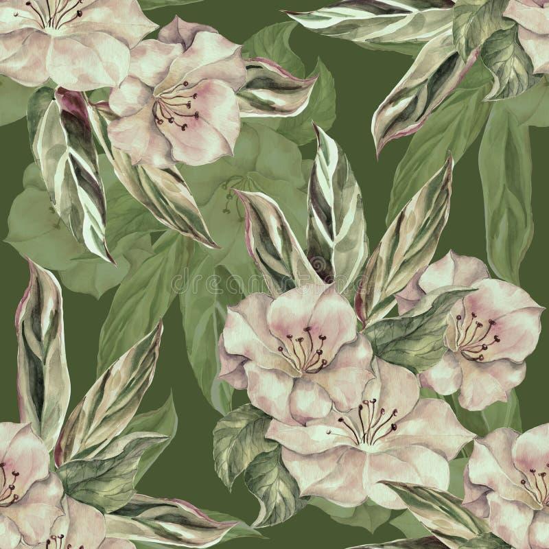 与叶子的水彩花 在绿色背景的单色无缝的样式 库存例证