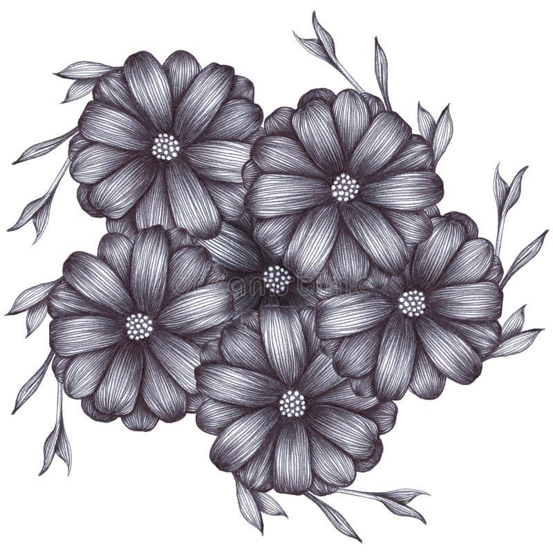 与叶子的灰度的花在与笔球的白色被隔绝的背景图画 手卡片的,海报图画例证 向量例证