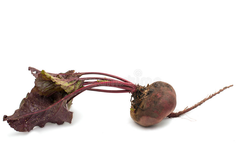 与叶子的红色甜菜在白色 免版税库存照片