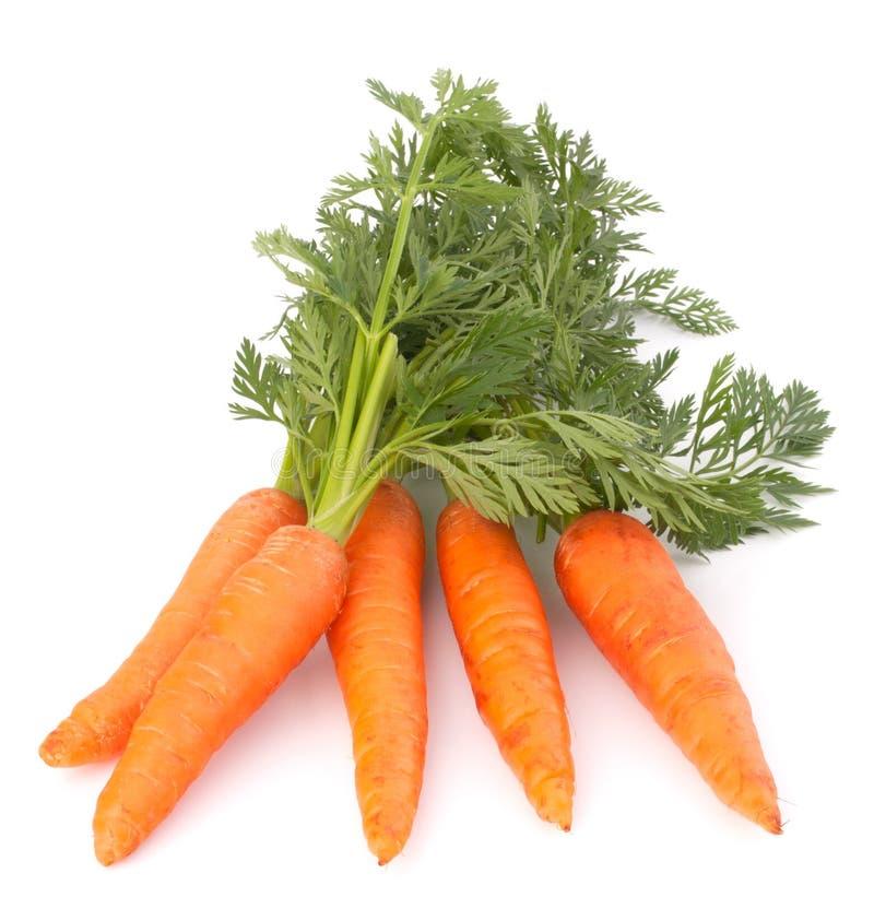 与叶子的红萝卜菜 库存照片