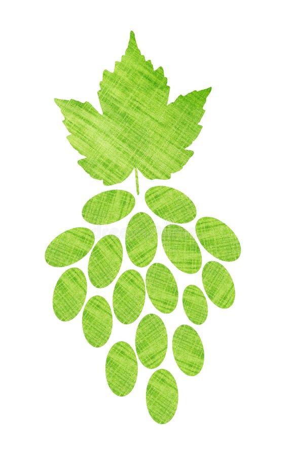 与叶子的美丽的绿色纺织品葡萄,隔绝在白色 库存图片