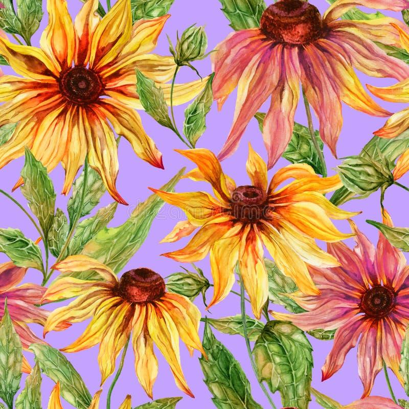 与叶子的美好的海胆亚目花coneflower在淡紫色背景 无缝花卉的模式 多孔黏土更正高绘画photoshop非常质量扫描水彩 皇族释放例证