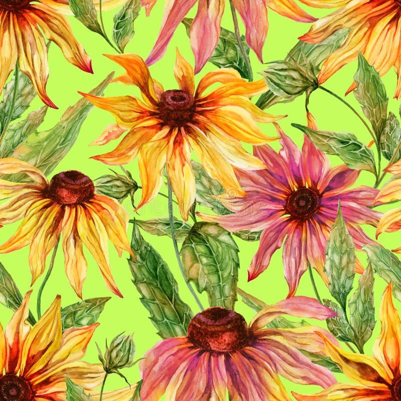 与叶子的美好的海胆亚目花coneflower在淡黄绿绿色背景 无缝花卉的模式 多孔黏土更正高绘画photoshop非常质量扫描水彩 向量例证
