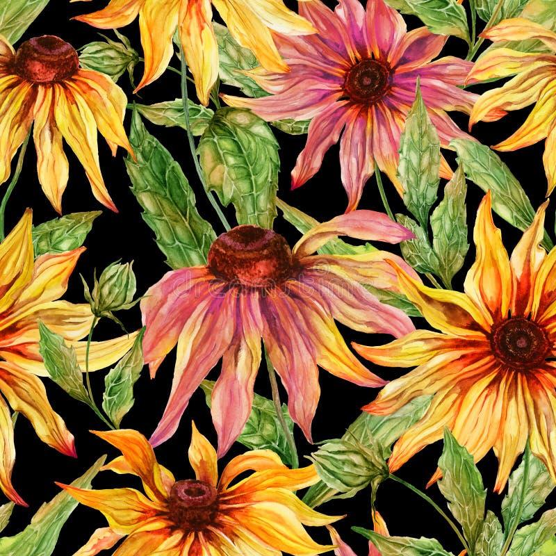 与叶子的美好的海胆亚目花coneflower在黑背景 无缝花卉的模式 多孔黏土更正高绘画photoshop非常质量扫描水彩 库存例证
