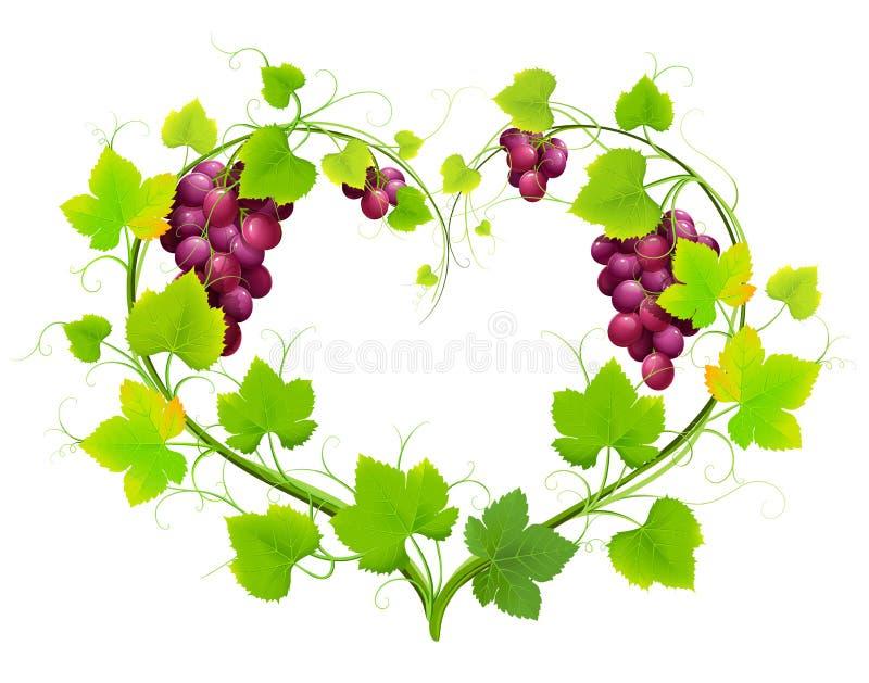 与叶子的葡萄以重点的形式 向量例证