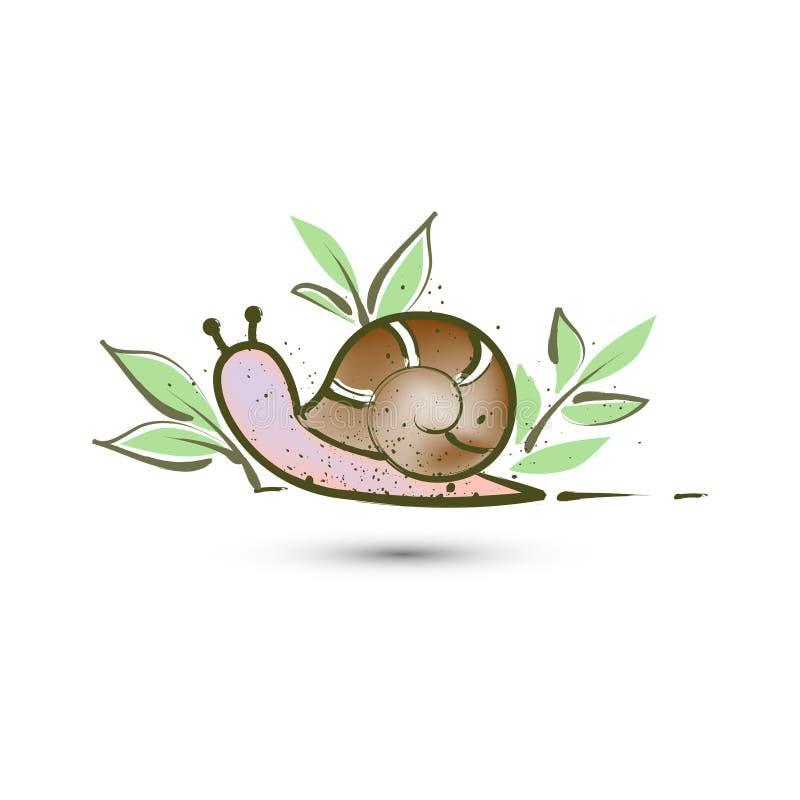 与叶子的蜗牛在难看的东西窗框 皇族释放例证