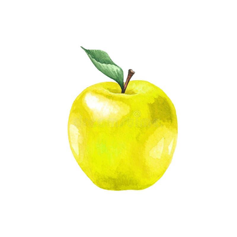 与叶子的黄色苹果 免版税图库摄影