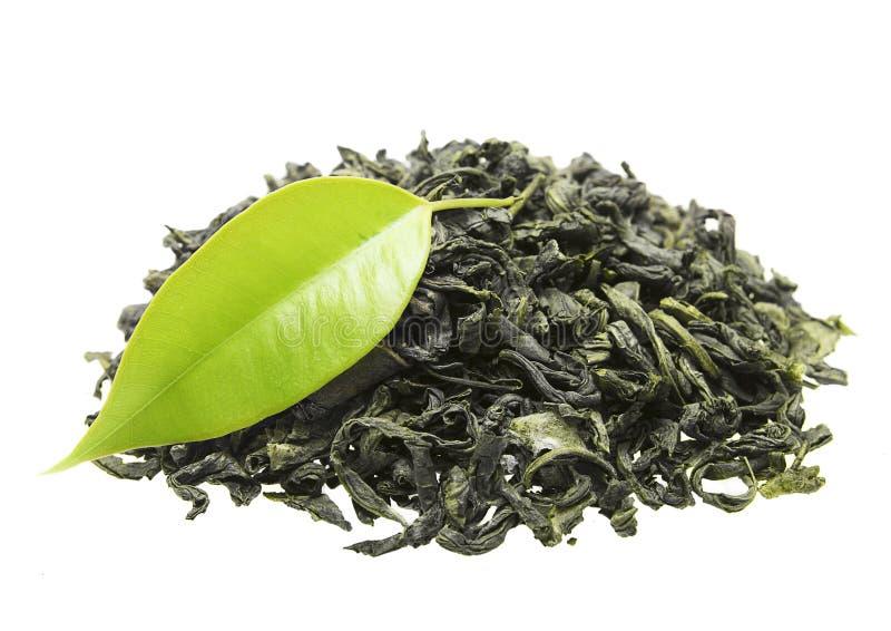 与叶子的绿茶 免版税库存照片