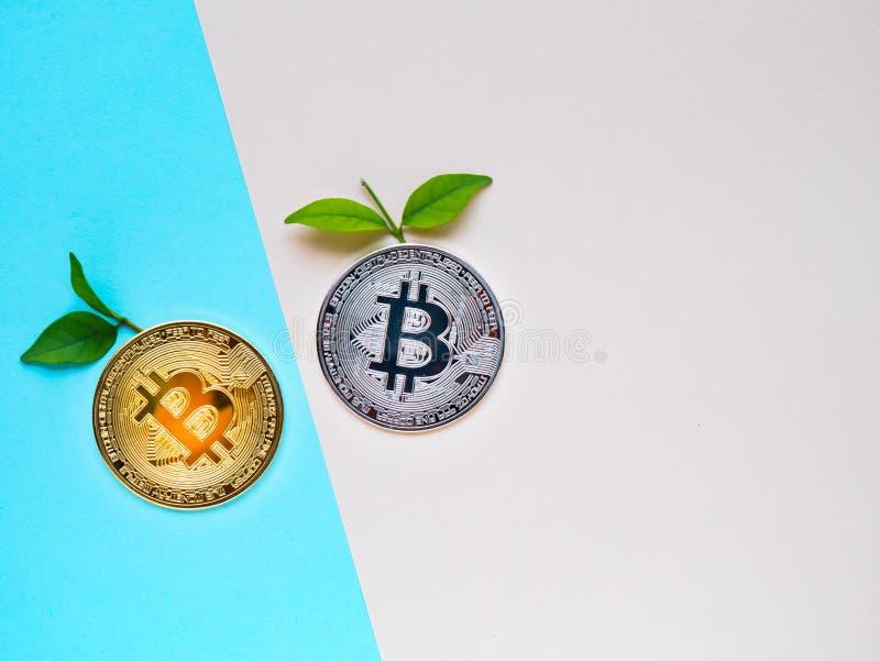 与叶子的Bitcoins在蓝色和桃红色背景 库存图片
