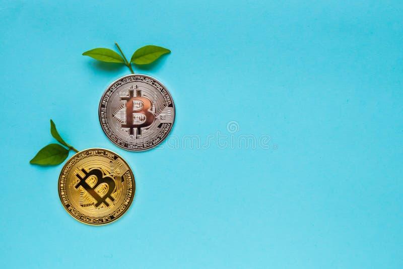 与叶子的Bitcoins在蓝色背景 库存照片