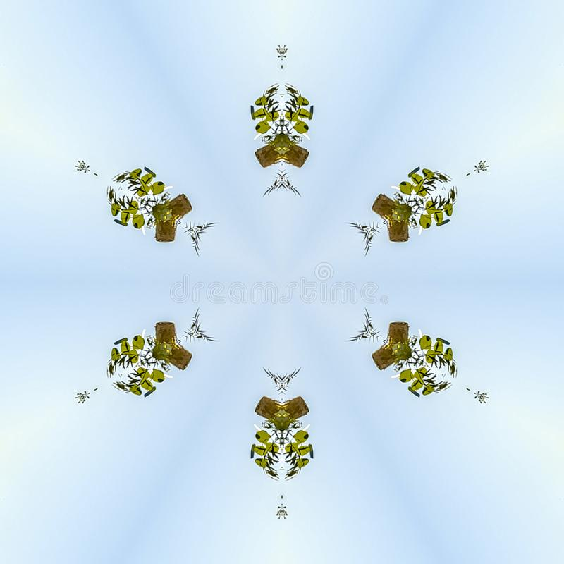 与叶子的Minimalistic花卉设计反对从婚礼的天空 皇族释放例证