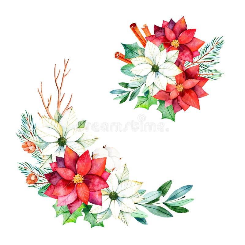与叶子,分支,棉花的2花束开花 向量例证