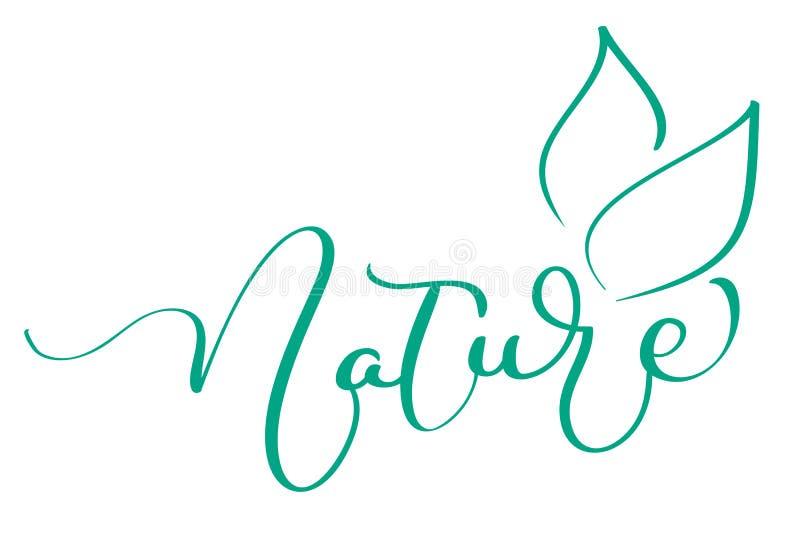 与叶子绿色墨水的自然词在白色背景 手拉的书法字法传染媒介例证EPS10 皇族释放例证
