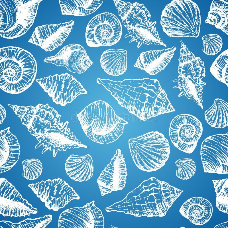 与各种各样的贝壳的手拉的无缝的样式 向量例证