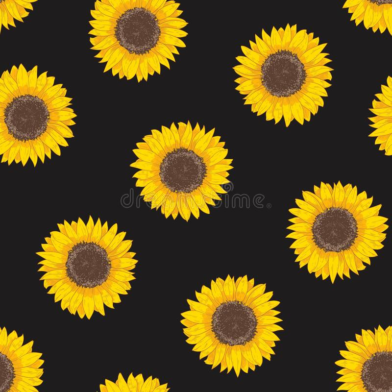 与向日葵头的植物的无缝的样式 与开花的花或手拉耕种的庄稼的自然背景  库存例证