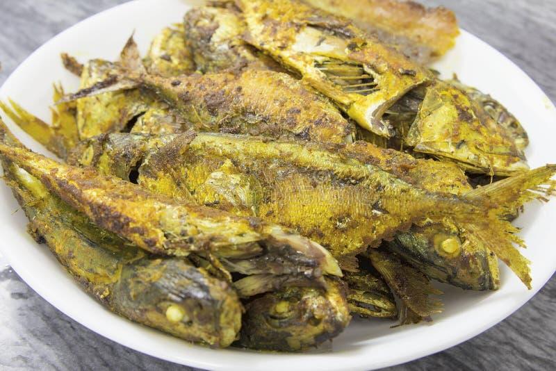 Download 与咖喱粉特写镜头的深被射击的鱼 库存照片. 图片 包括有 深深, 特写镜头, 东南, 午餐, 餐馆, 烹调 - 30330958