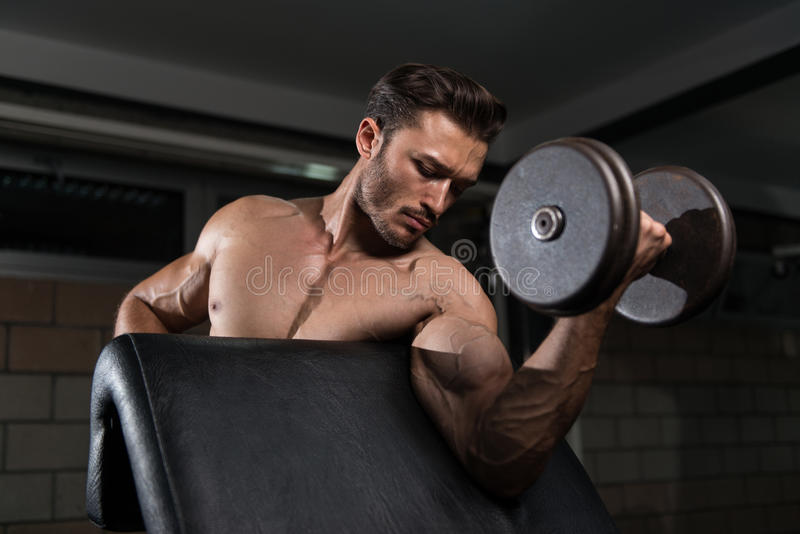 与哑铃的二头肌锻炼在健身房 库存照片