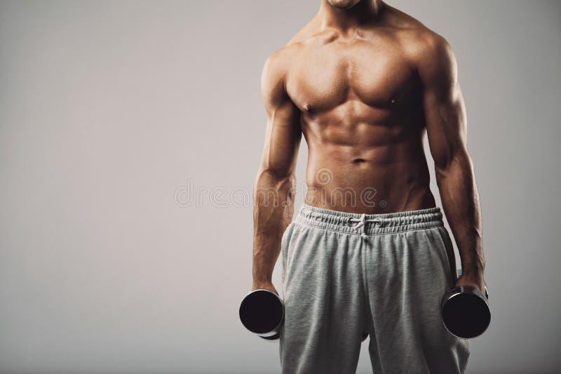 与哑铃的健身男性模型在灰色背景 免版税库存照片