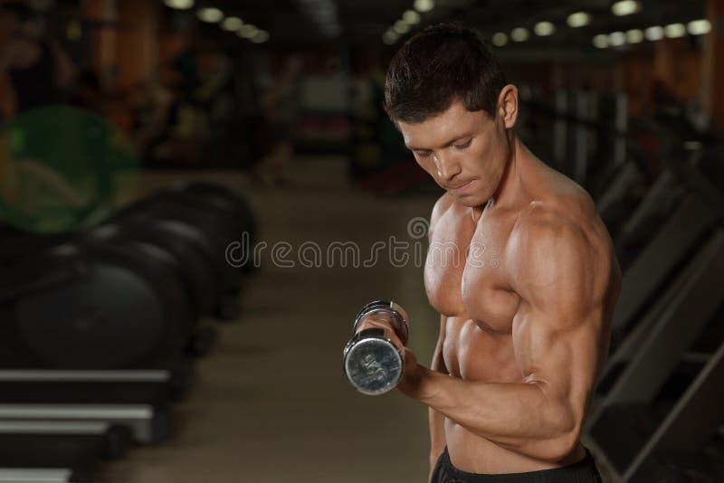 与哑铃的被晒黑的肌肉人锻炼在健身房 库存图片