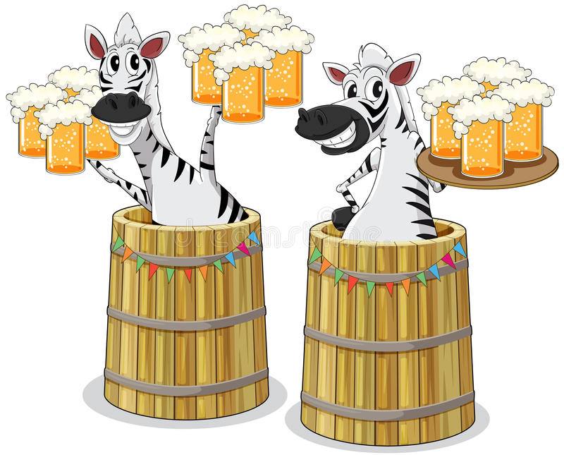 与啤酒瓶子的斑马 库存图片