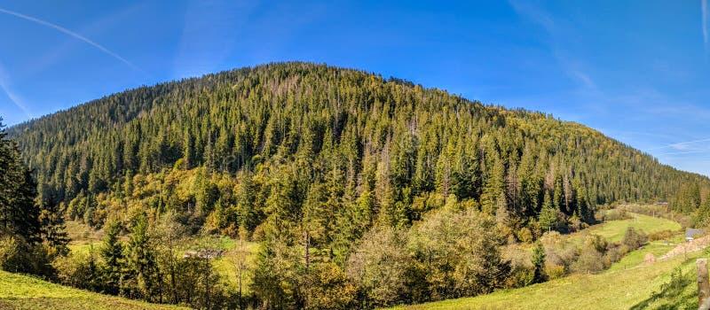 与喀尔巴阡山脉的风景在春季 免版税图库摄影