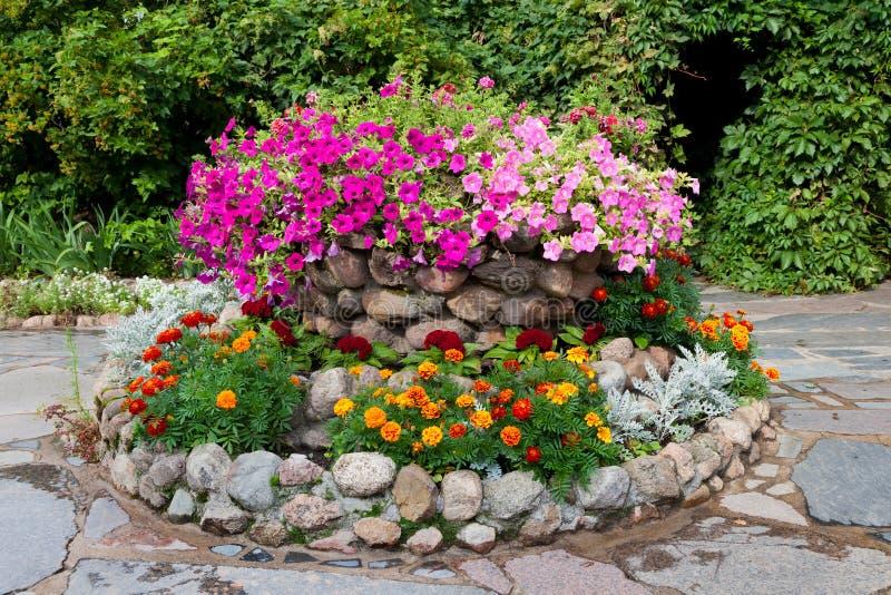 与喇叭花和万寿菊的花床 图库摄影