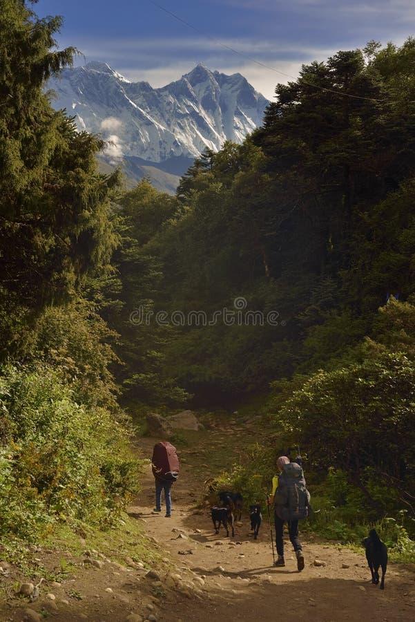与喜马拉雅山的风景在途中的背景中对珠穆琅玛营地, 免版税图库摄影
