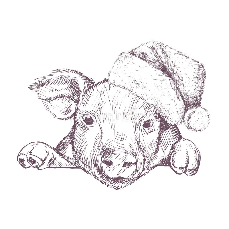 与图象的圣诞节海报在圣诞老人` s帽子的一张猪画象 也corel凹道例证向量 向量例证